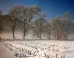 Sotto la neve (6)